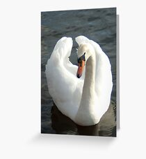 Aware of her beauty Greeting Card