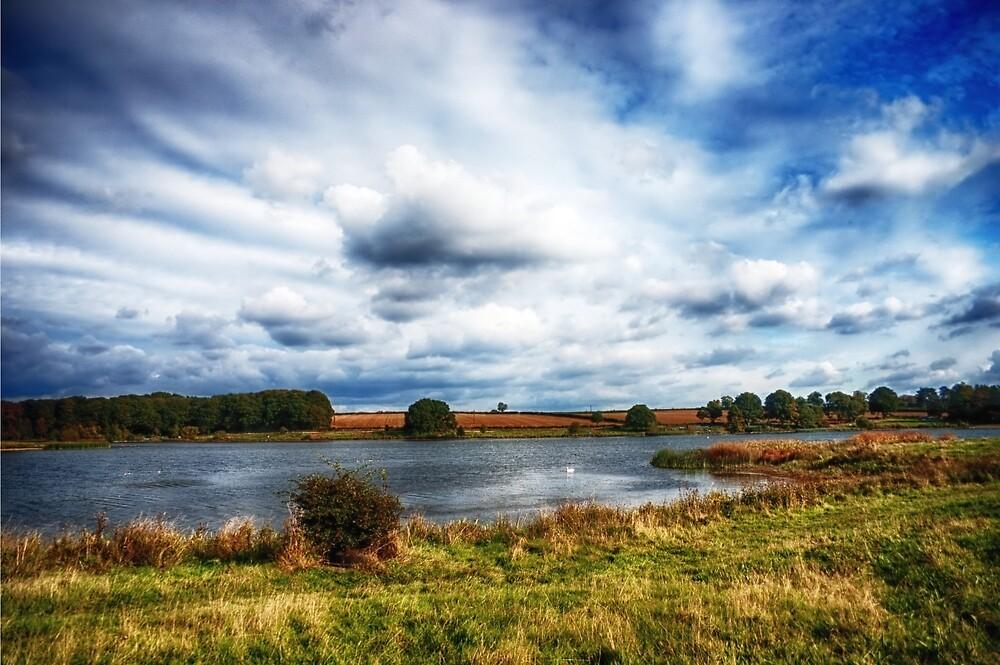 Across the Pond by Vicki Field