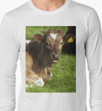 A calf of Llanfairfechan. Long Sleeve T-Shirt