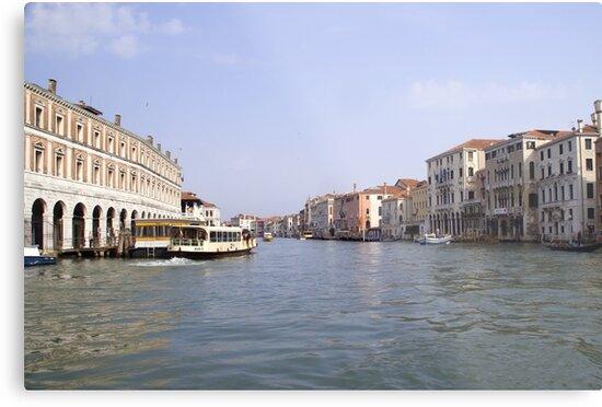 Venice waterway by Steve plowman