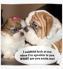 English Bulldog Humor Poster