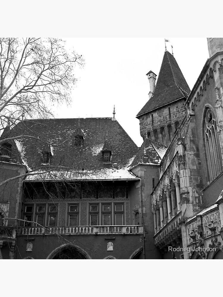 Vajdahunyad Castle, Budapest by rodneyj46