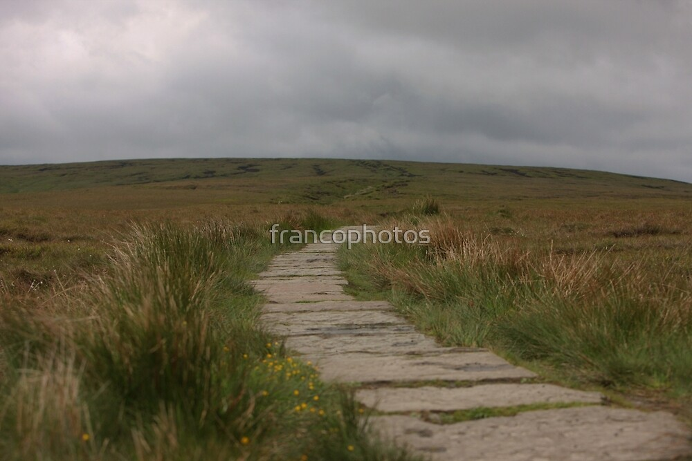 The Path To Nowhere! by Franco De Luca Calce