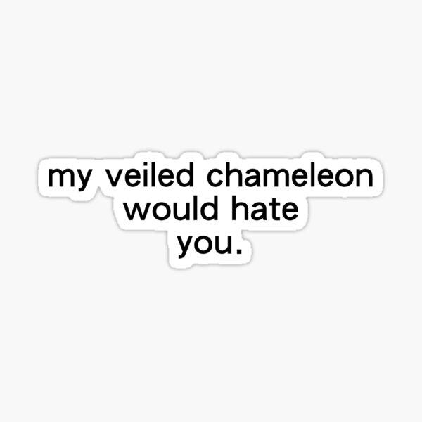 My Veiled Chameleon Would Hate You - Sticker, T-shirt, Mug, Etc. Sticker