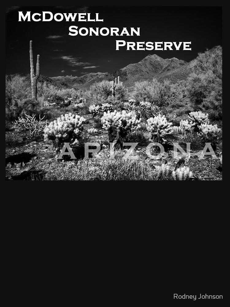 McDowell Sonoran Preserve, Scotsdale Arizona by rodneyj46