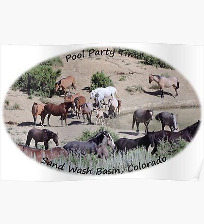 Sand  Wash Basin Pool  Party Poster