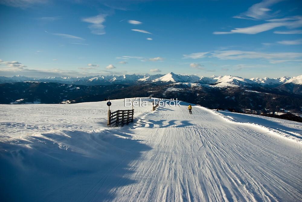 Skiing from Rosenkrantz by Béla Török