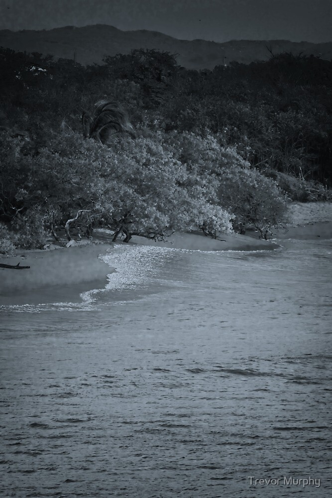 Playa Blanca b/w by Trevor Murphy
