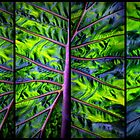Palm Leaf Panel by Jessica Jenney