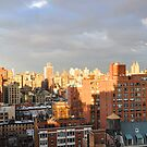 New York City Skyline Penthouse View by Sarah McKoy
