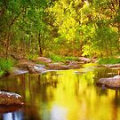 River of Gold by Tracie Louise