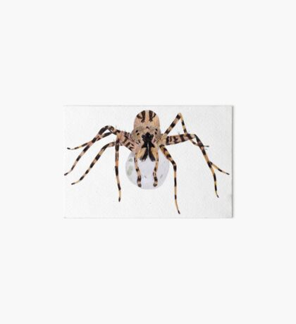 Spider with an Egg Sack Art Board Print