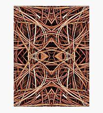 Pine Straw Kaleidoscope Photographic Print