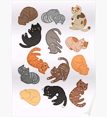 Cats and Cats and Cats Poster