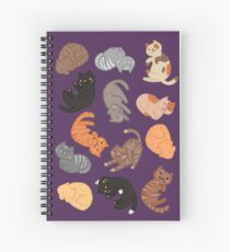 Cats and Cats and Cats Spiral Notebook