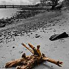 Stumped, no longer adrift by Jason Ruth