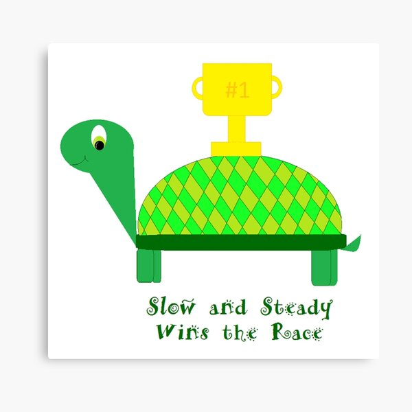 Slow And Steady Wins The Race Turtle By Aimee Gal Redbubble