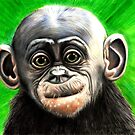 Baby bonobo with background by Margaret Sanderson