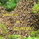 Will You Bee...valentine card by MaeBelle