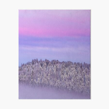 Foggy snow covered spruce forest at sunset Art Board Print