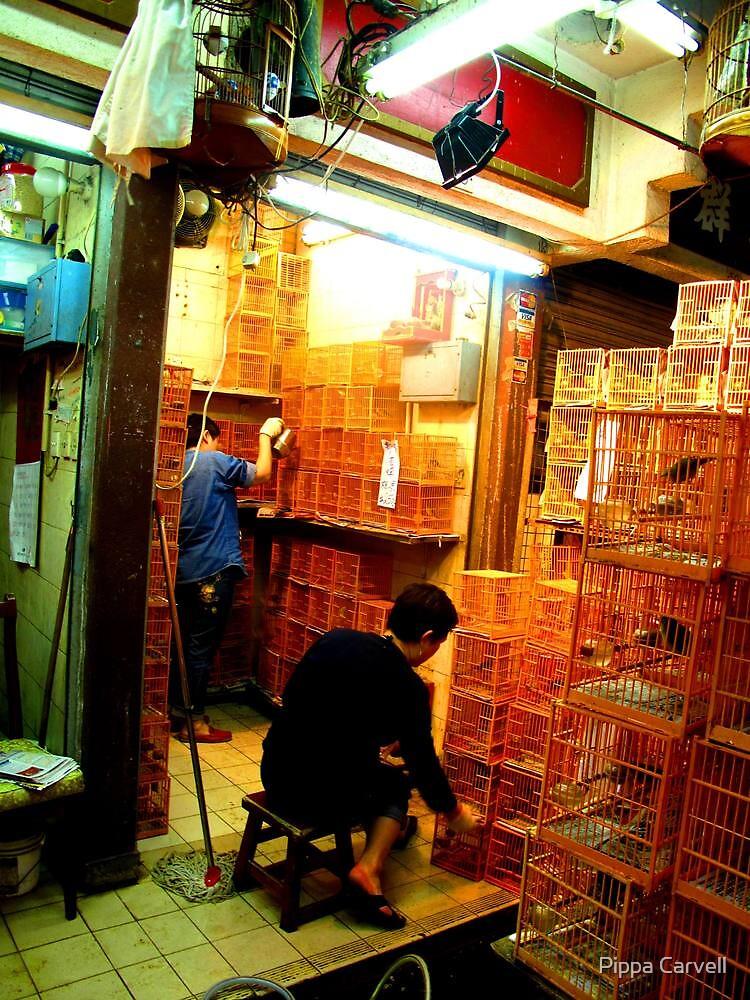 Hong Kong Bird Market by Pippa Carvell
