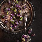 Brussels Sprouts by alan shapiro