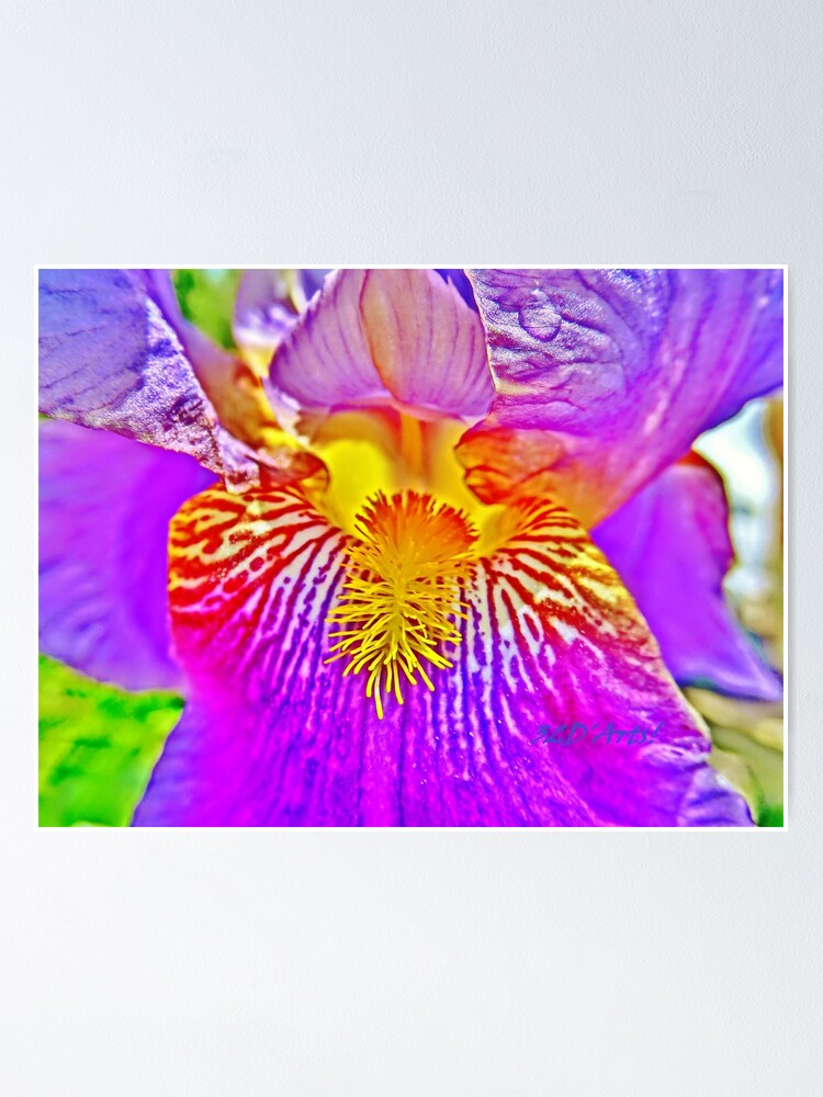 Alternate view of Flight of the Iris Bee, 3 of 4 Poster