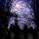 Full moon graveyard by Hedgehog