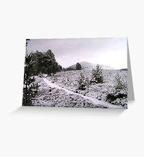 Rothiemurchus - Cairngorms Greeting Card