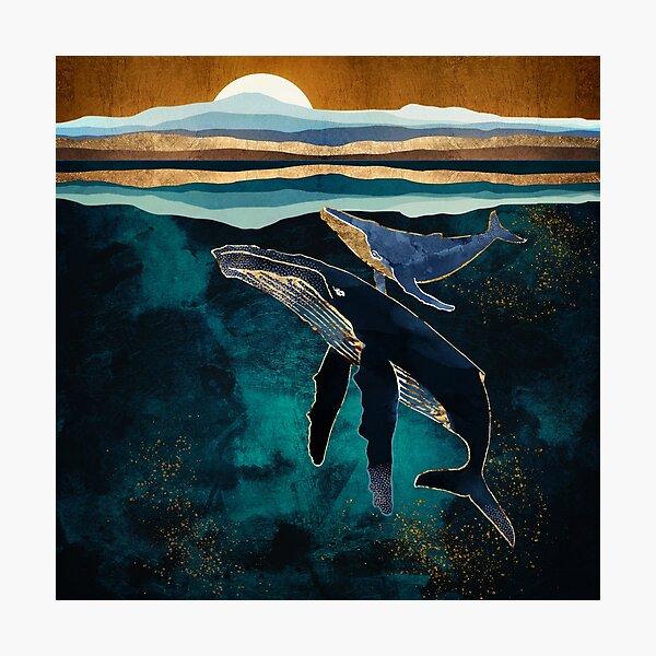 Moonlit Whales Photographic Print
