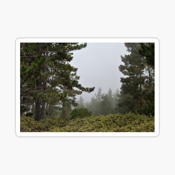 Fog in the Distance Sticker