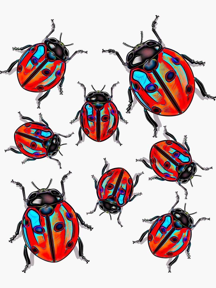 Ladybug Bugs Birds by CrunchySqueak