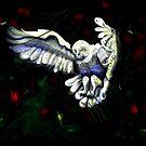 Ghost Bird by Herbert Renard