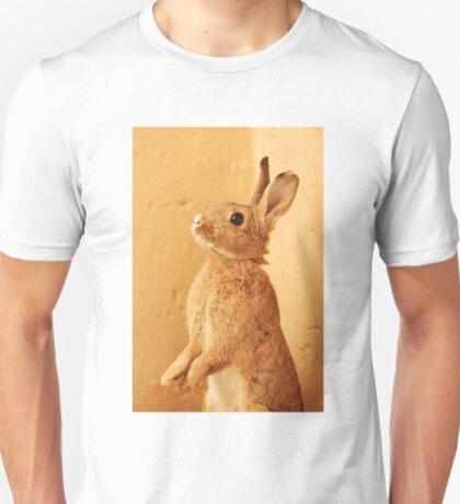 a bunny named milo T-Shirt