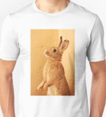 a bunny named milo T-Shirt