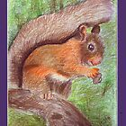 Red Squirrel by MJ123