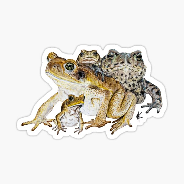 The Toads Sticker