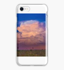 Lightening In the Everglades iPhone Case/Skin