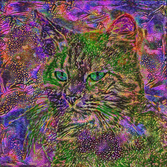 Abstract magick cat