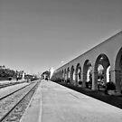 Railroad Travels  by LeonidasBratini