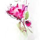 Rose von annemiek groenhout