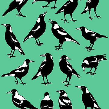 AUSTRALIAN MAGPIES - tee shirt layout (choose your colour) by pavlovais