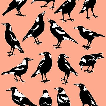MAGPIES - Australian native birds (red or pink) by pavlovais