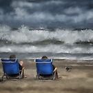 Storm Watchers by Lois  Bryan