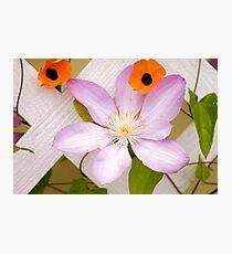 Beautiful Boothbay Harbor Photographic Print