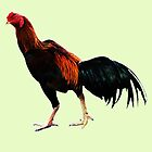 Thai Rooster by DAdeSimone