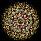 Sunflower Mandala by Cherie Roe Dirksen