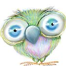 Burt the Big-Eyed Bird by Cherie Roe Dirksen