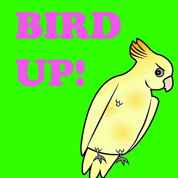 Bird UP by MarcoD