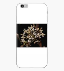 grevillea triloba iPhone Case